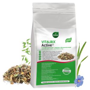 vitalbix active plus