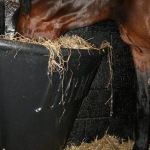 e59ae56d836 Het shopaanbod - Paard en Voeding