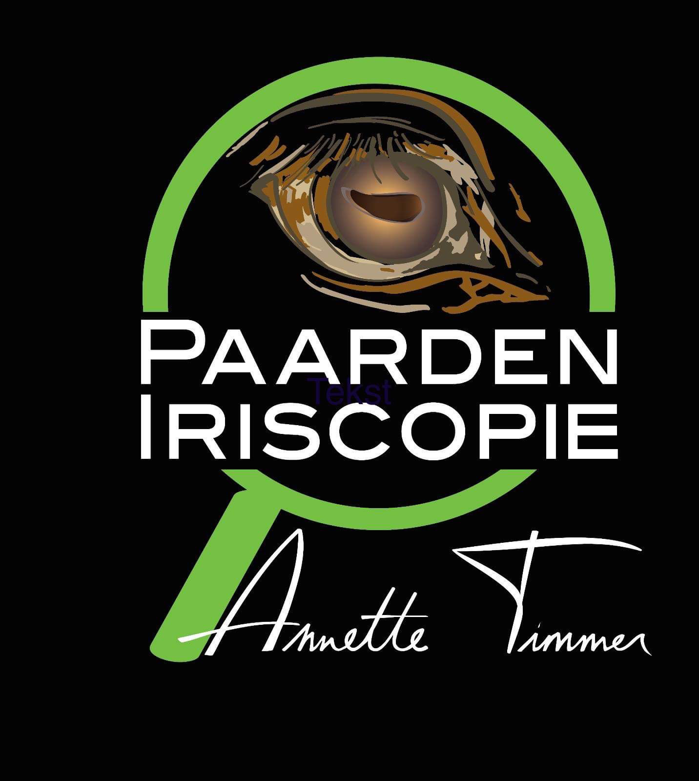 Lezing Iriscopie Annette Timmer 28 feb 2020